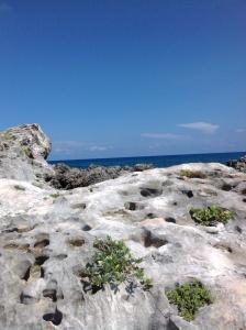 martian beach